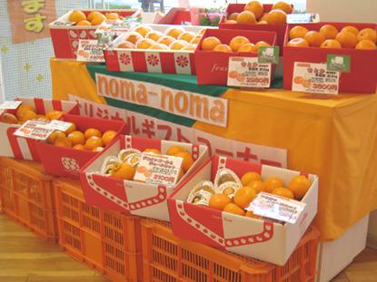 noma-noma(のま果樹園 松山大街道店)|No.10